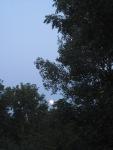 Big Moon Rising